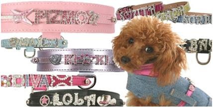 Dog crystal collars, Two poodles and me
