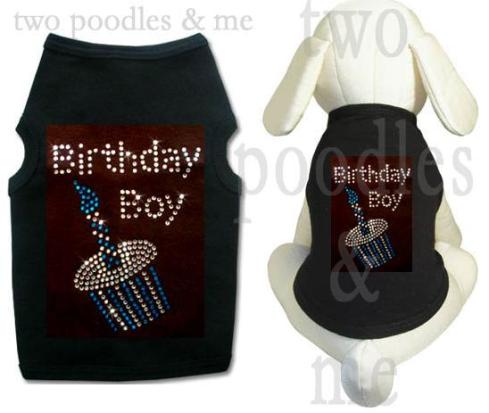 dog tank top, birthday boy in swarovski crystal